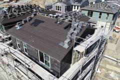 Avendale-Roof-Dry-in-11