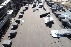Avendale-Roof-Dry-in-4